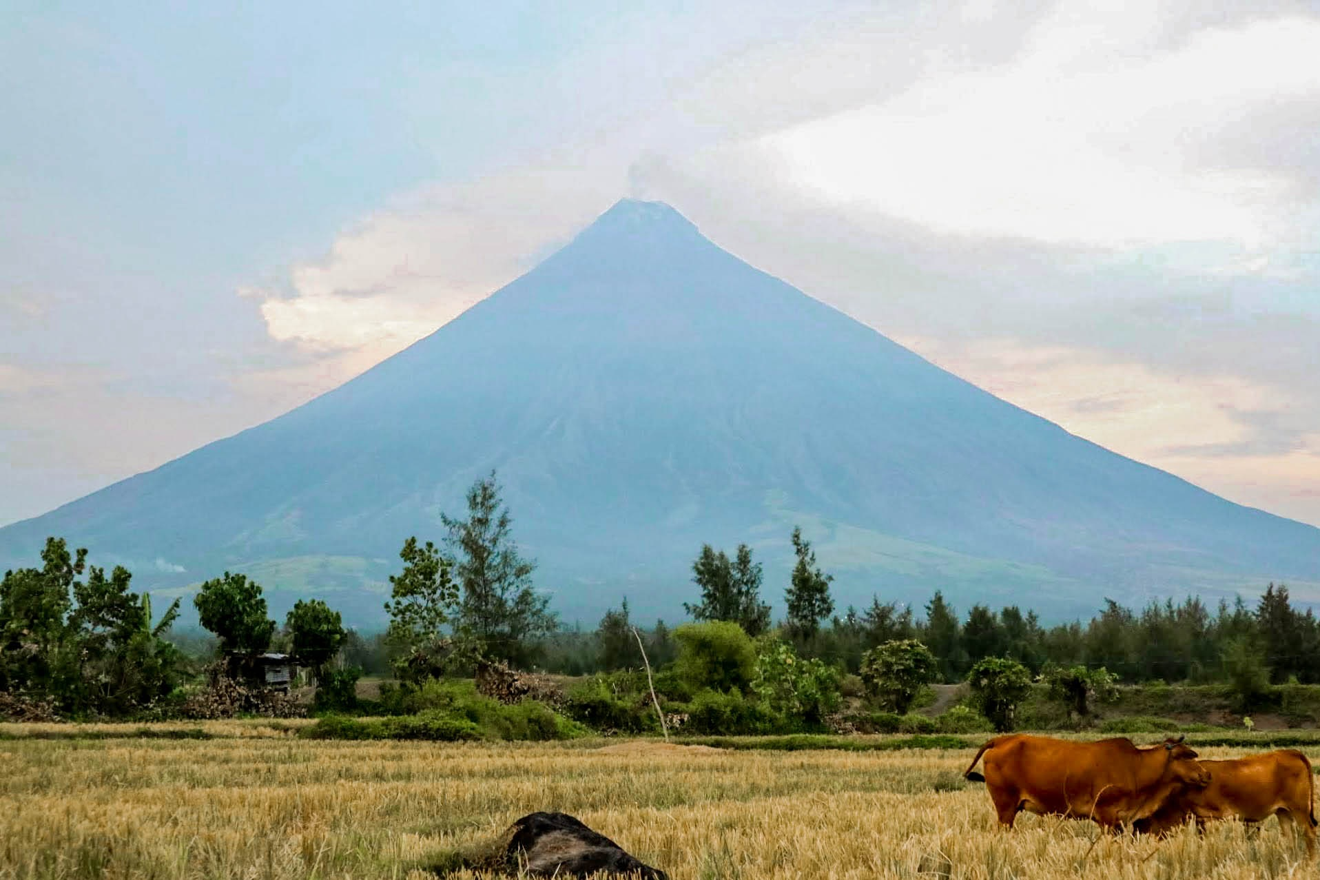 Mount+Mayon+Good+Trip+PH