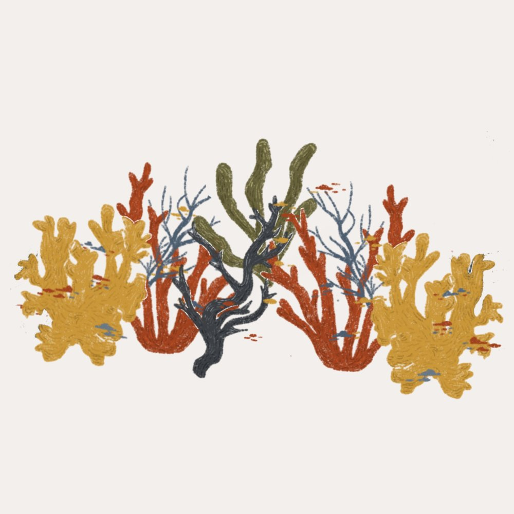 Corals+Cover.jpg