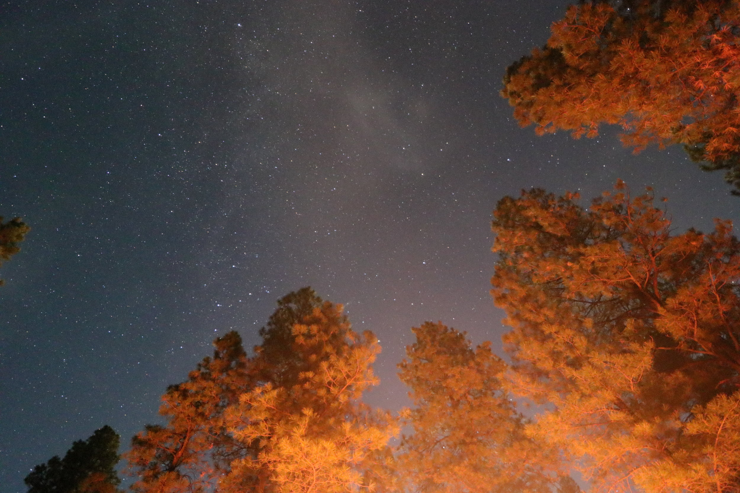 GC night sky.jpg