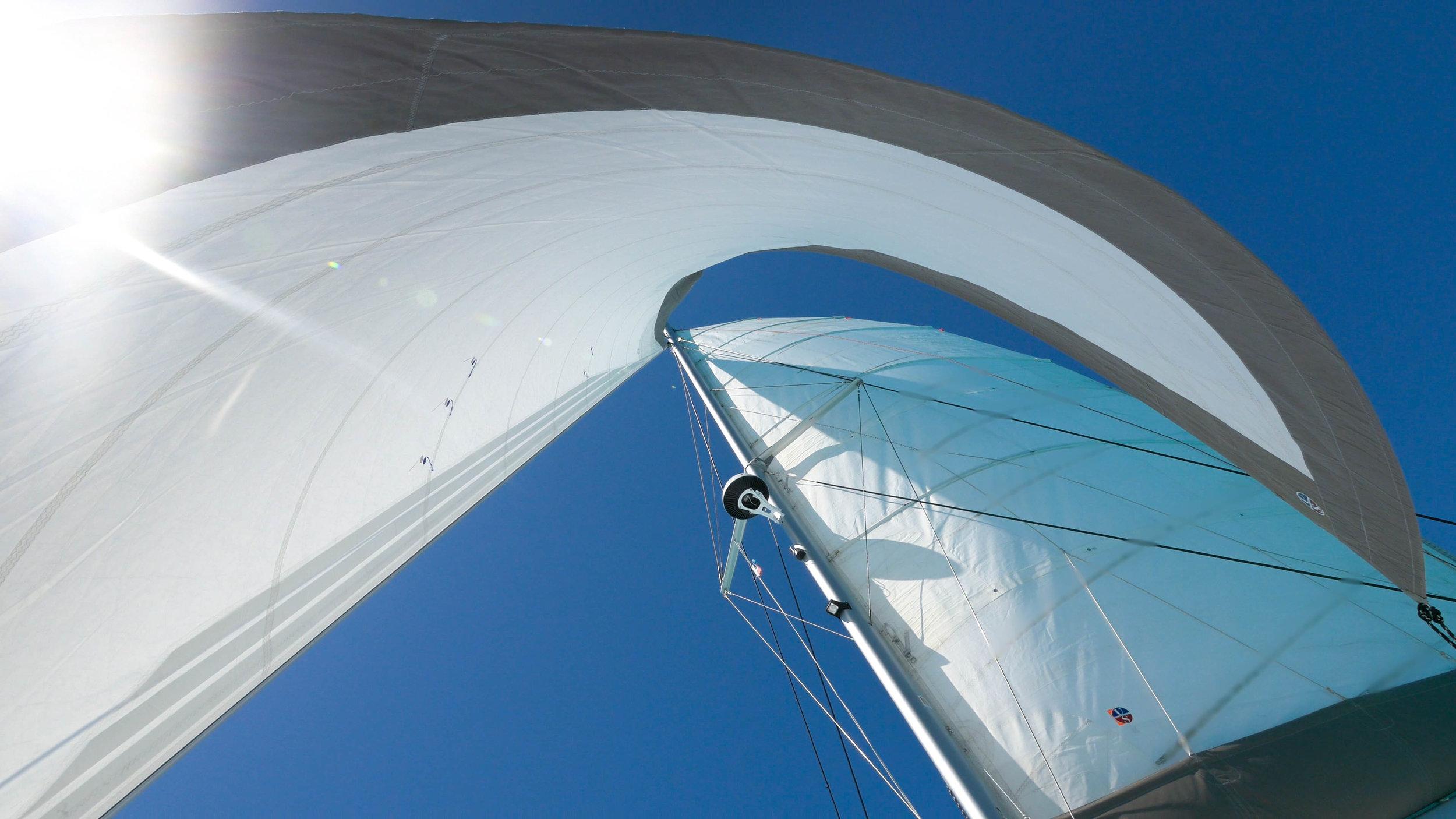 sails 1.jpg