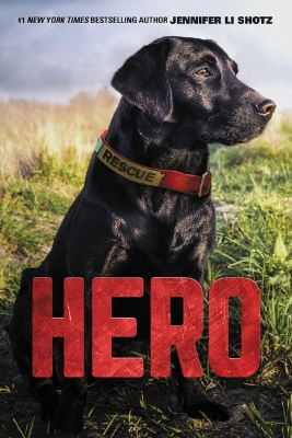 The Hero Series for Middle Readers  Hero, a retired search-and-rescue dog, is not prepared for a stray puppy to come into his life. But when he and twelve-year-old Ben find Scout injured and afraid, the new addition leads them down an unexpected and dangerous path.  When Scout goes missing, it's up to Hero to use his search-and-rescue skills to find Scout and bring him home.
