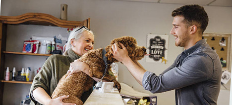 dog-business.jpg