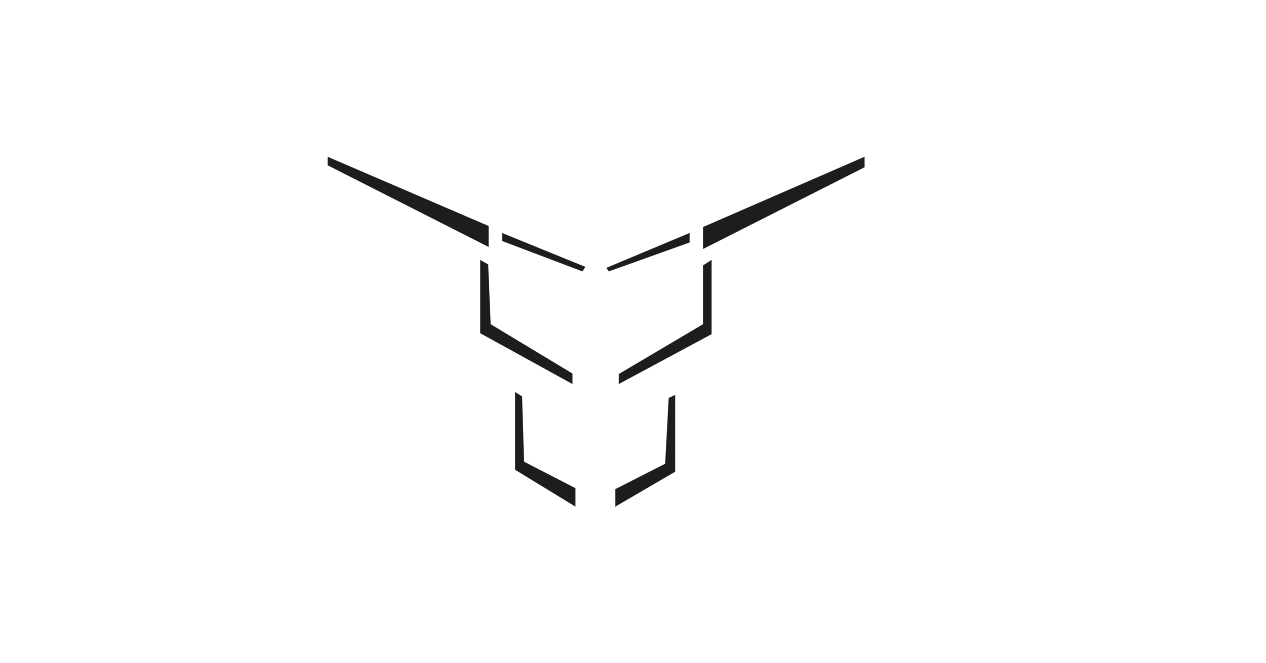 Bull at the Gate Logo WEB.png