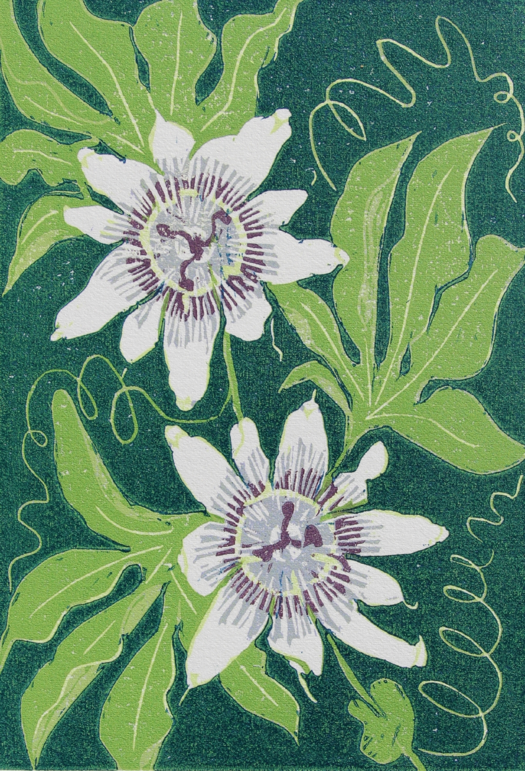 'Passionflower'