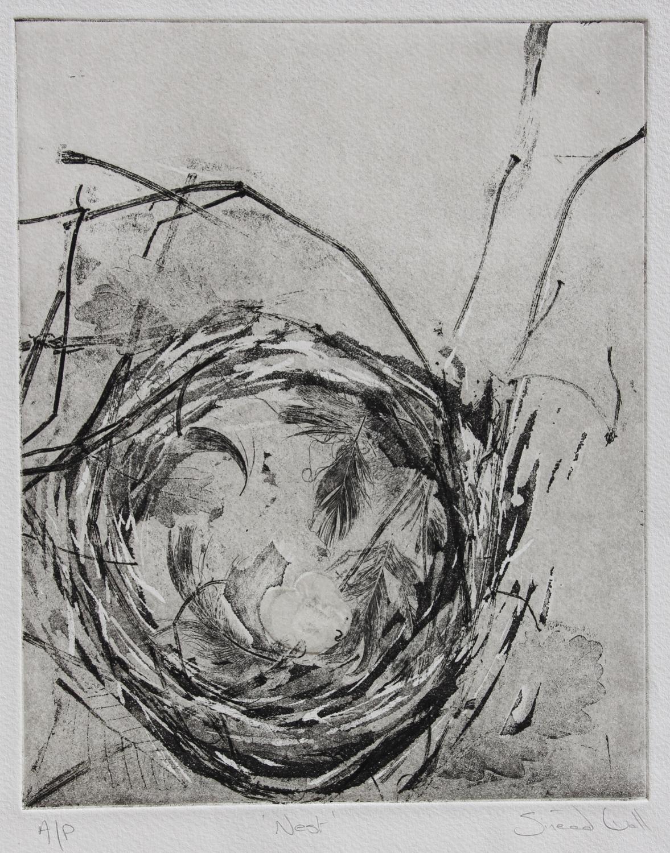 'Nest'