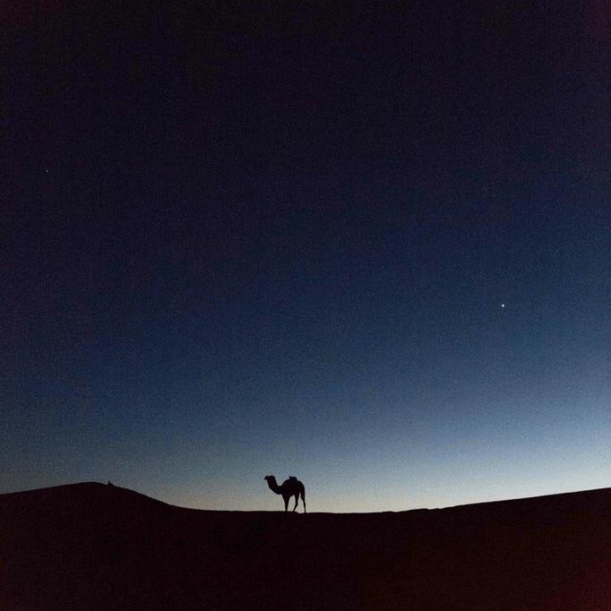 marokkos-02.png