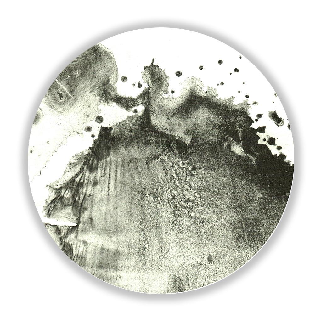 Lion Roar , 30 cm diameter, UV print on Plexiglass, 2015. Edition of 5