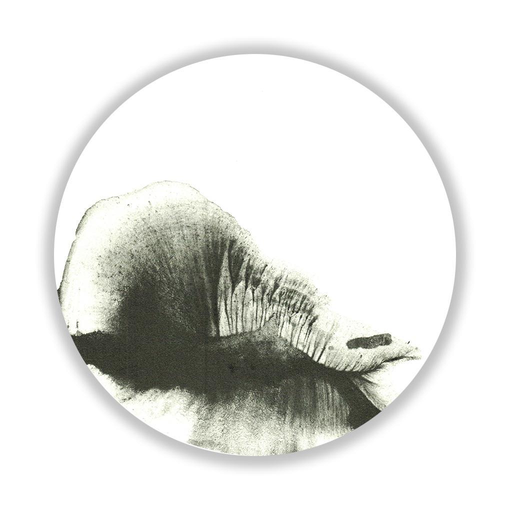 Peace , 30 cm diameter, UV print on Plexiglass, 2015. Edition of 5