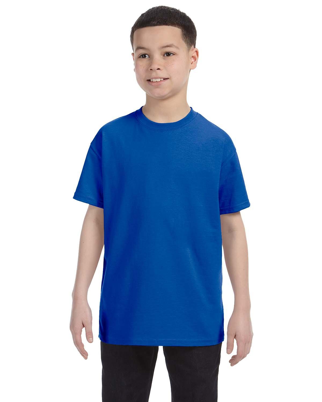 100% Cotton T-Shirt #G500B