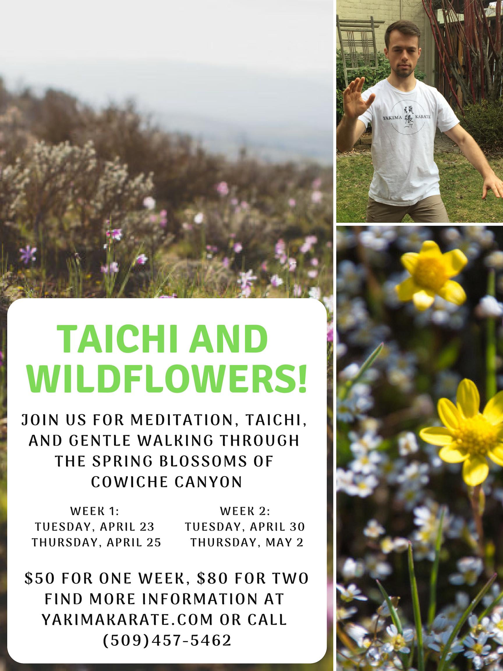 Taichi and Wildflowers.jpg