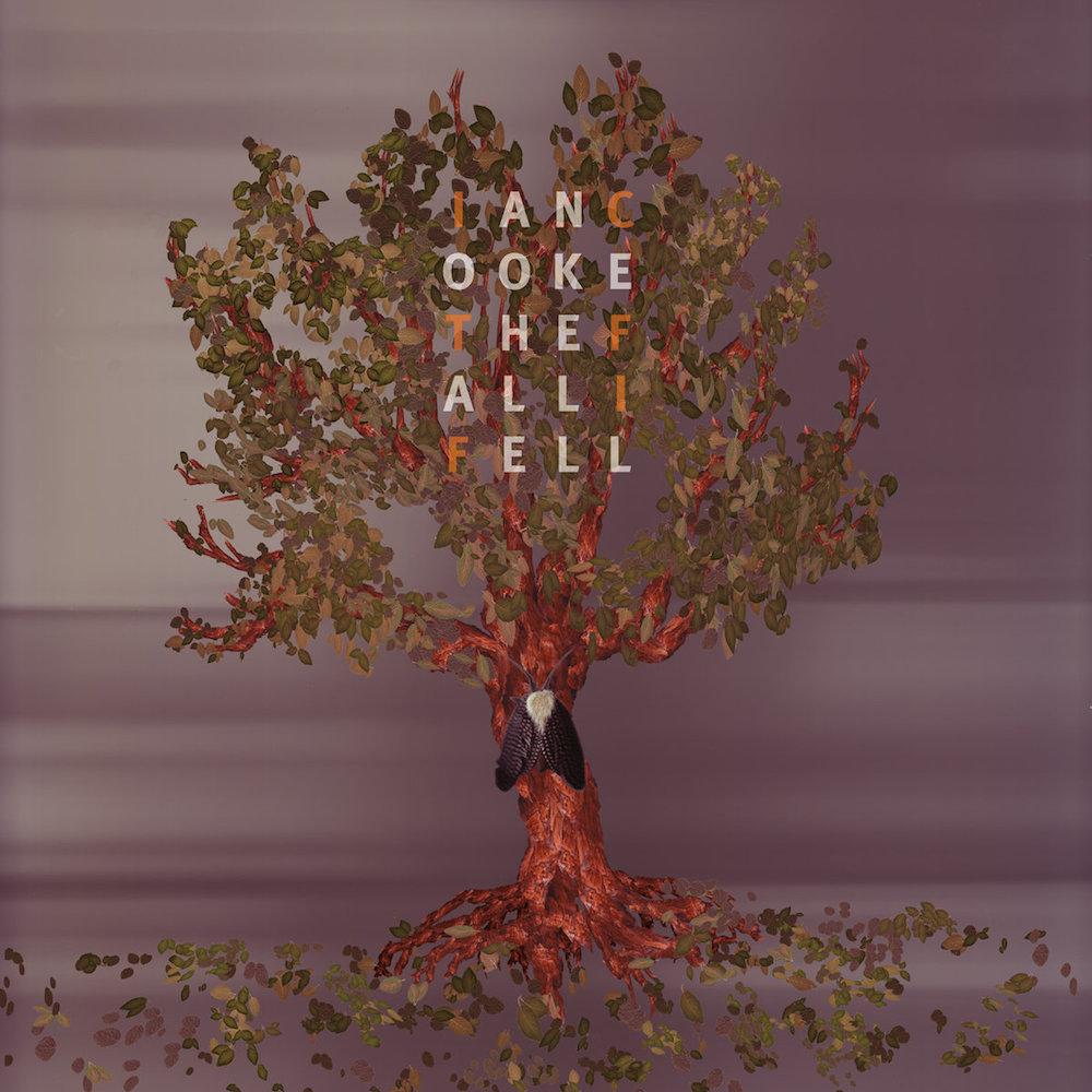 The Fall I Fell  by Ian Cooke. 2007.