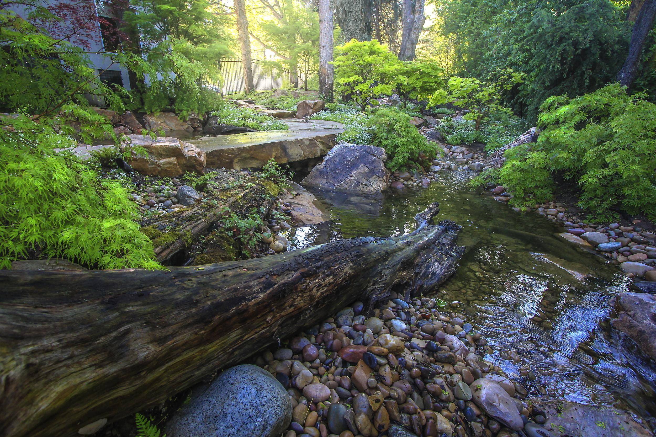 natural landscape install