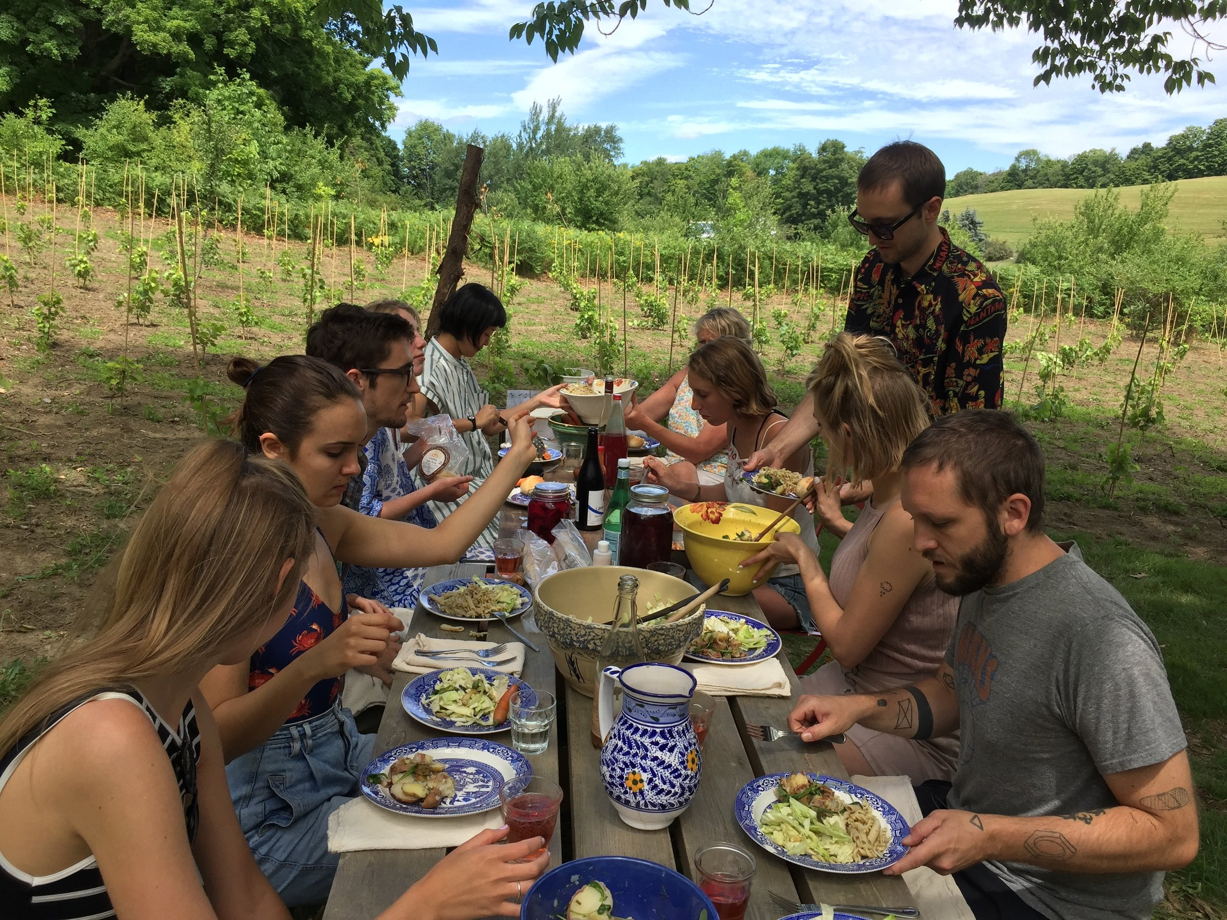 24 vineyard lunch, 2.jpg