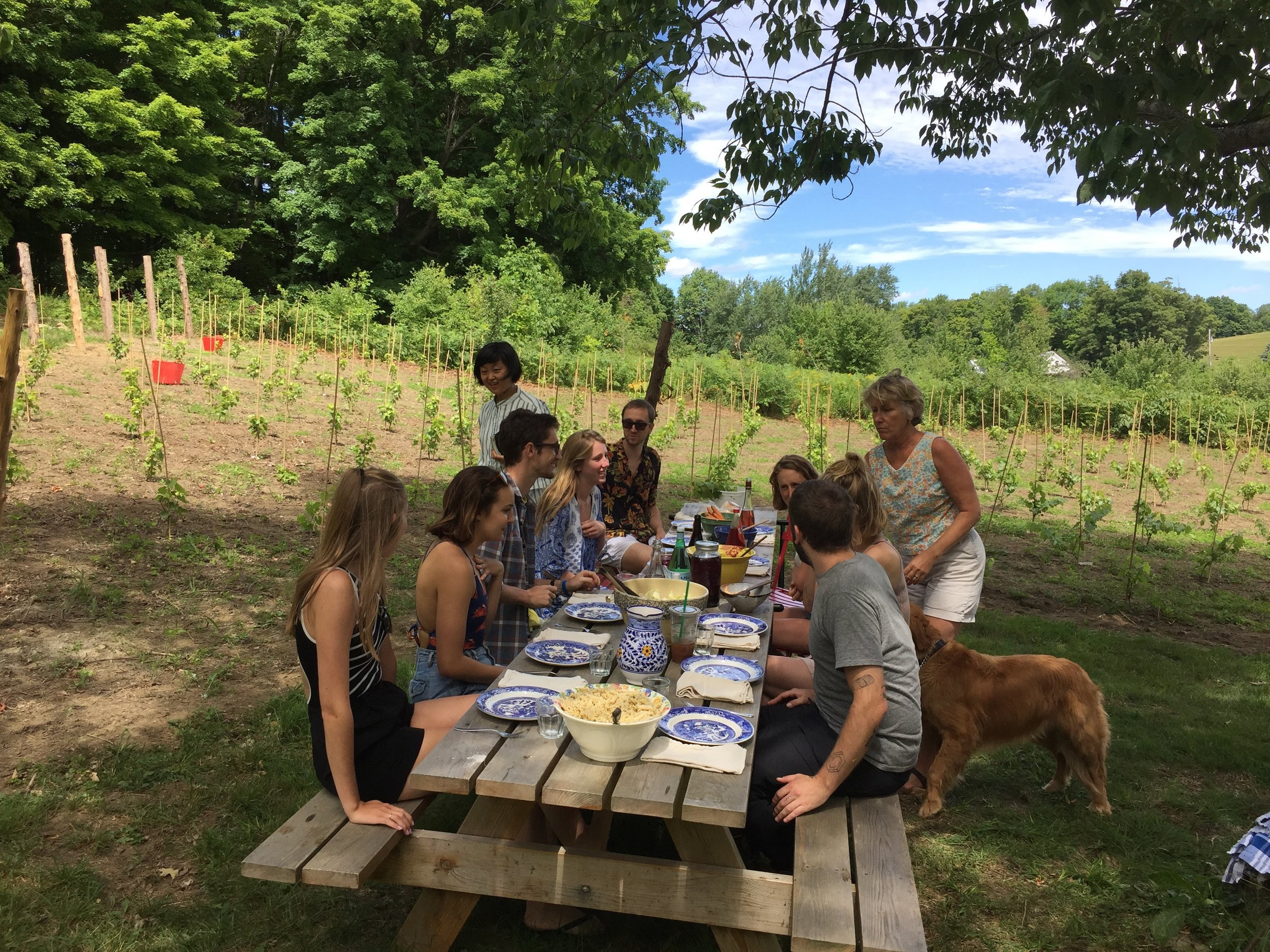 25 vineyard lunch, 3.jpg