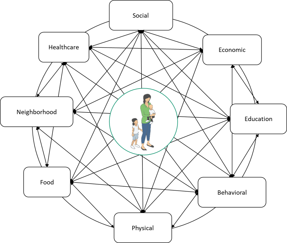 Within the complex system of community, all the individual parts change and respond to the information and events flowing through the whole system.