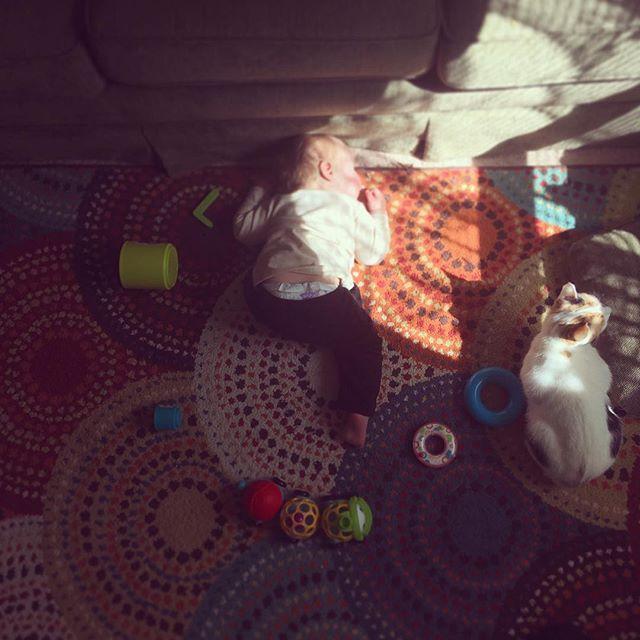 Play hard. Nap Harder. 👶🏼 . . . #advicefrombabybear #momlife #toddler #boymom #mamabeardoulaky
