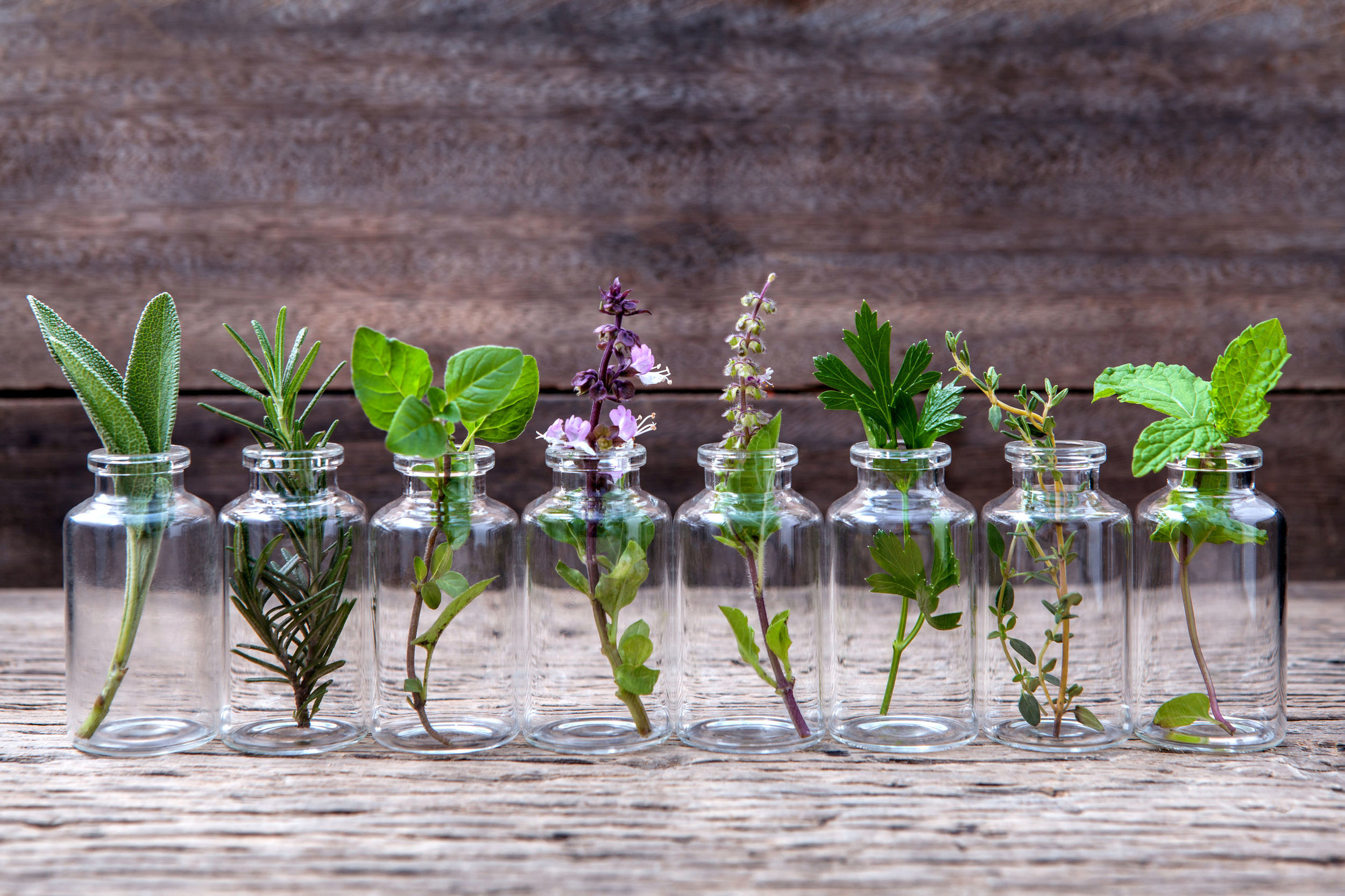 Clear bottles with herbs.jpg