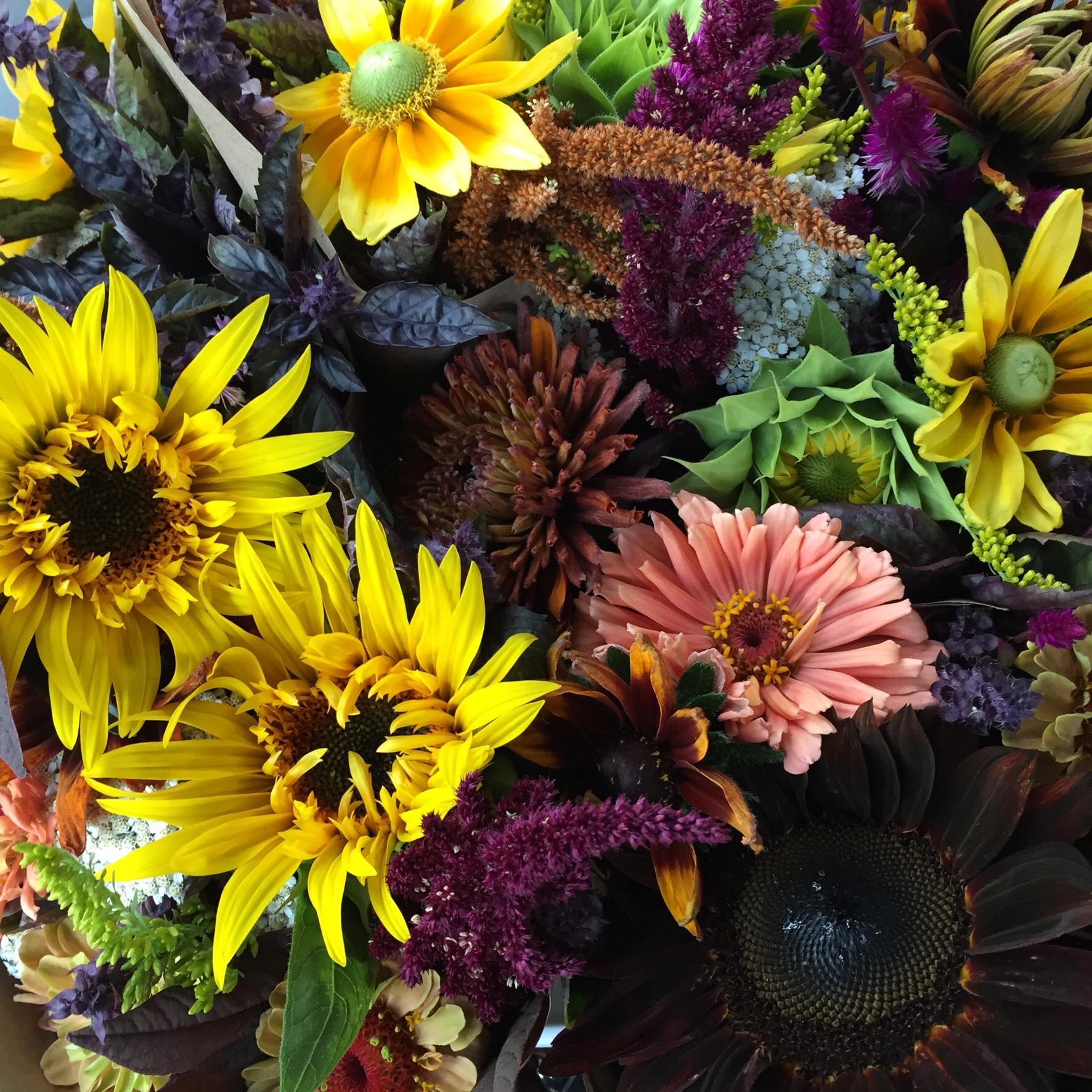 Autumn Bouquets.jpeg