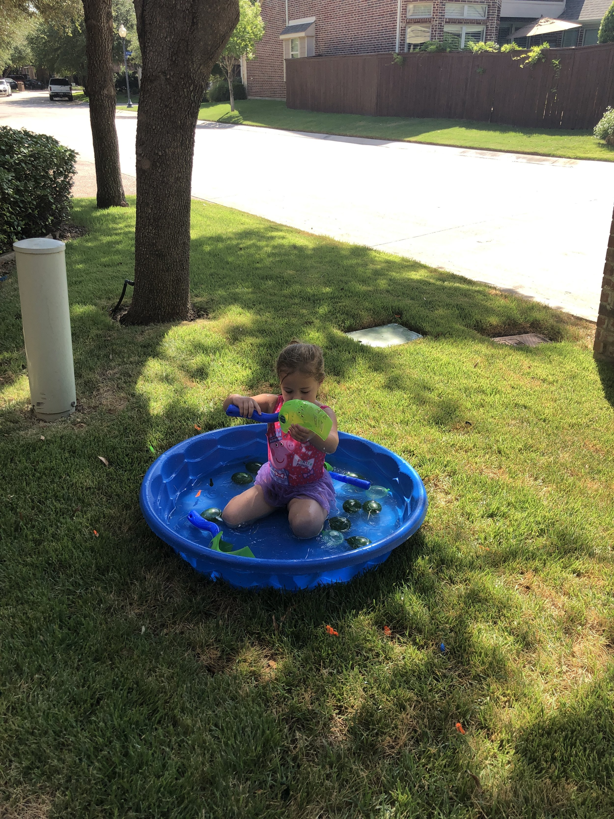 Oh, you know just swimming in the front yard...