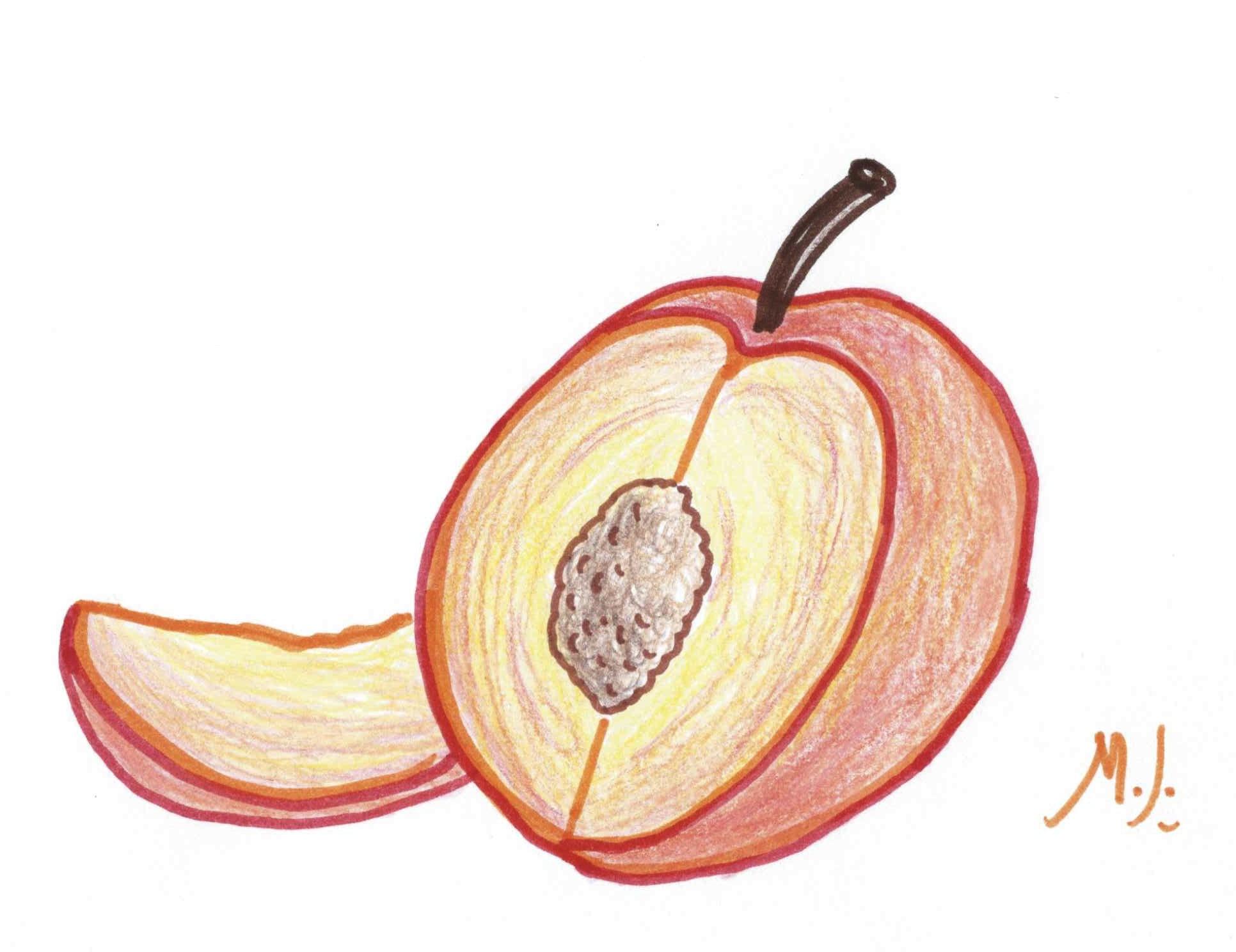 quirky-peaches-sketch.jpg