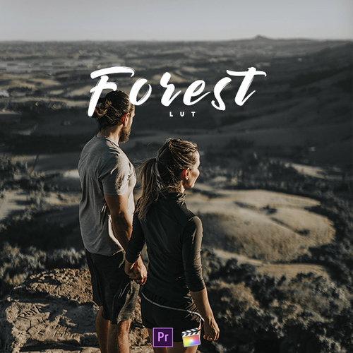 LM - FOREST   LUT PACK — Leo Manicardi