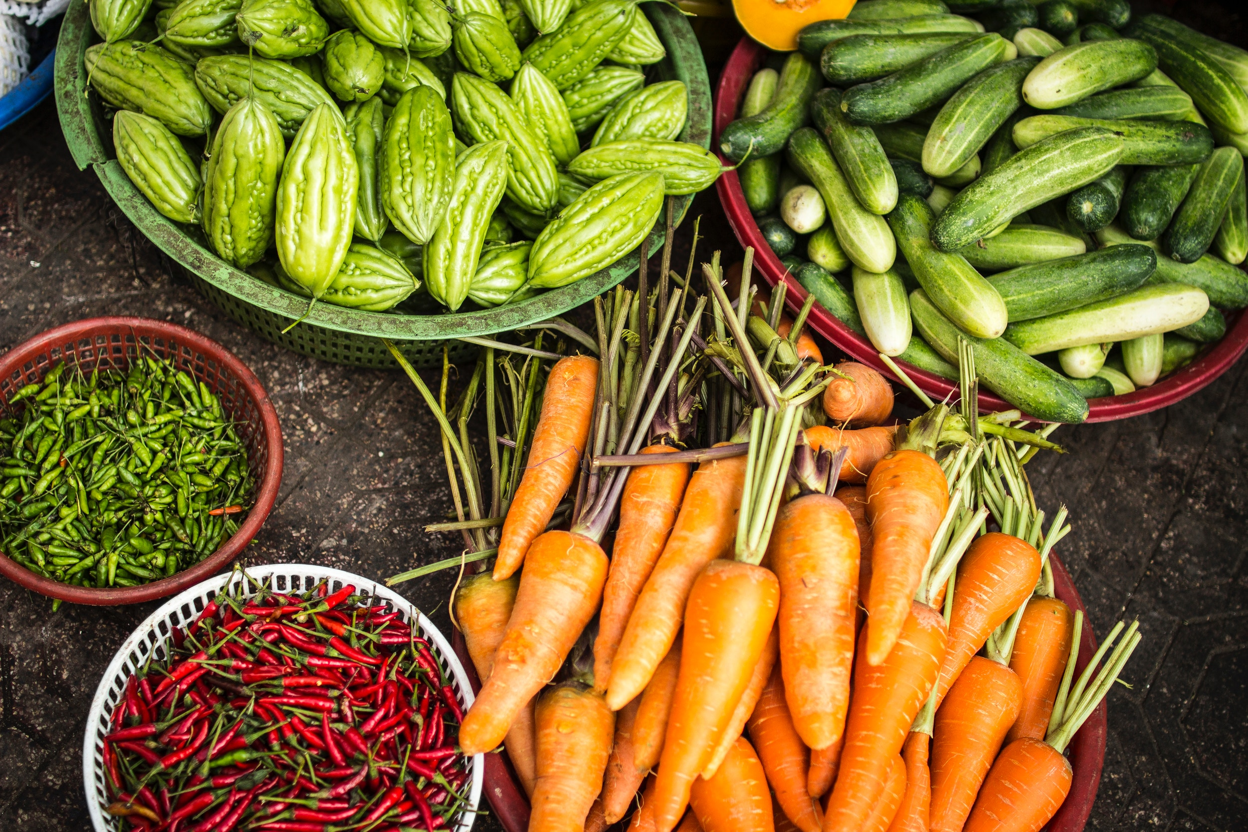 How to Grow Your Own Food -