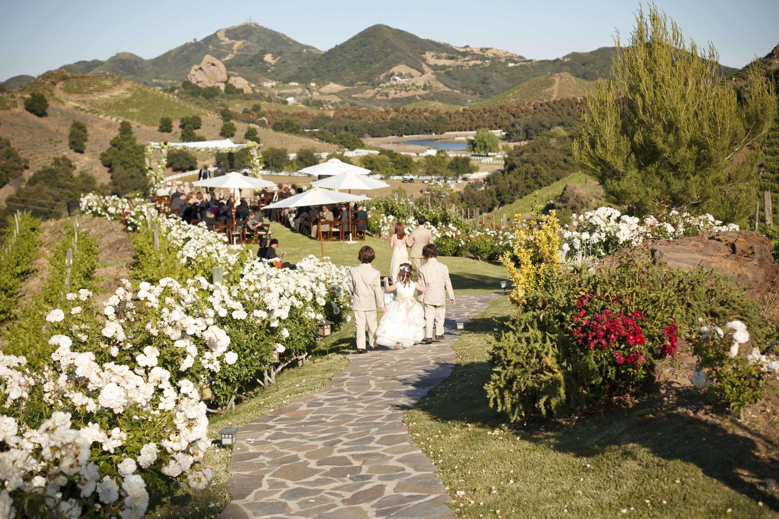 Malibu Wedding -