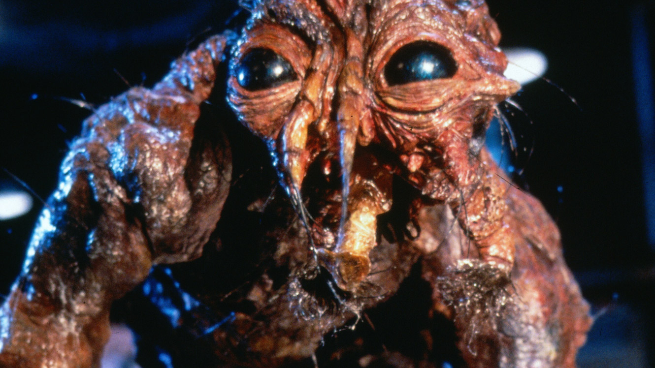Bad Girls Die First: Horror Podcast - The Fly, Jeff Goldblum