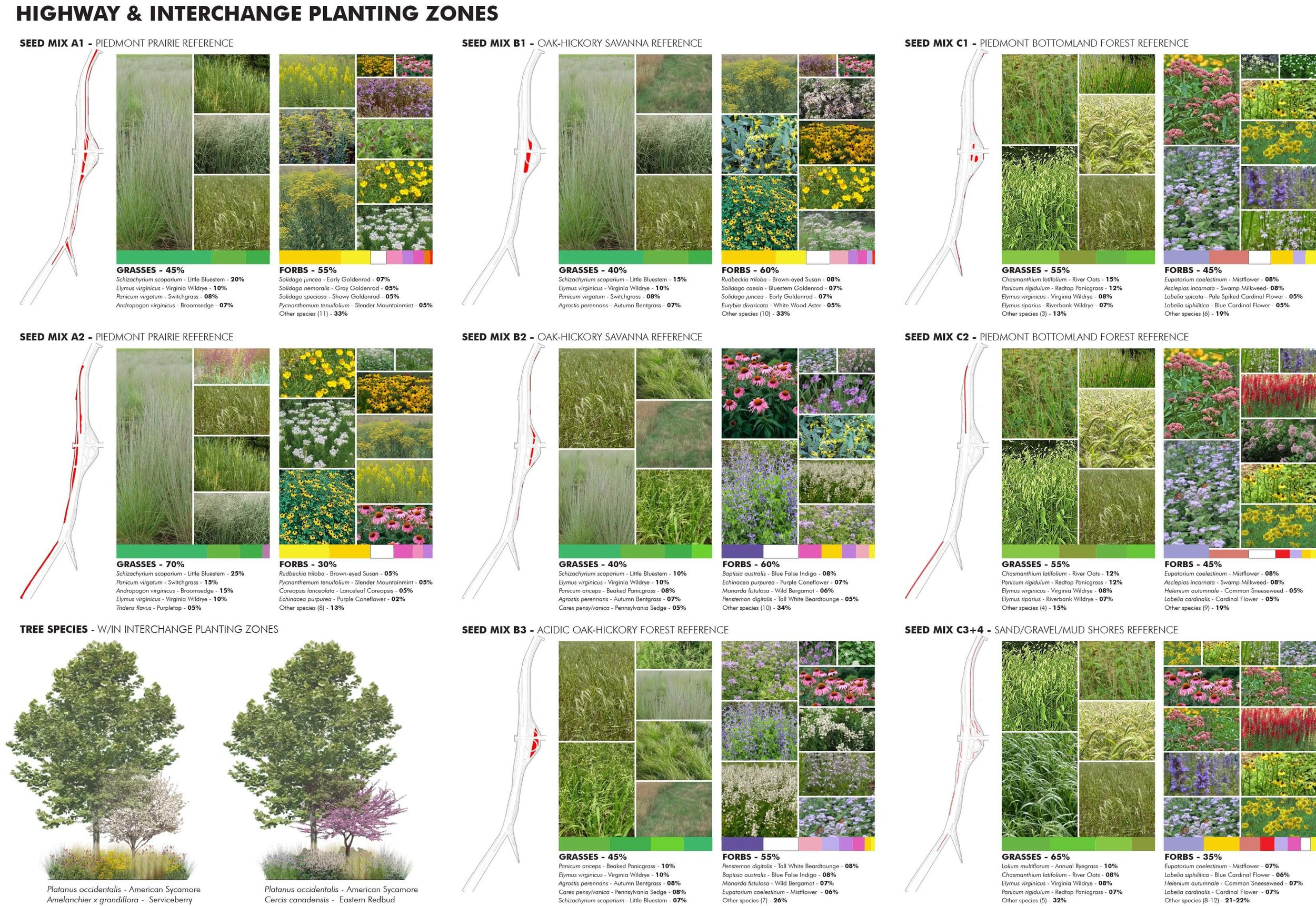 15-Access Road Ecotones-Plant Selection.jpg