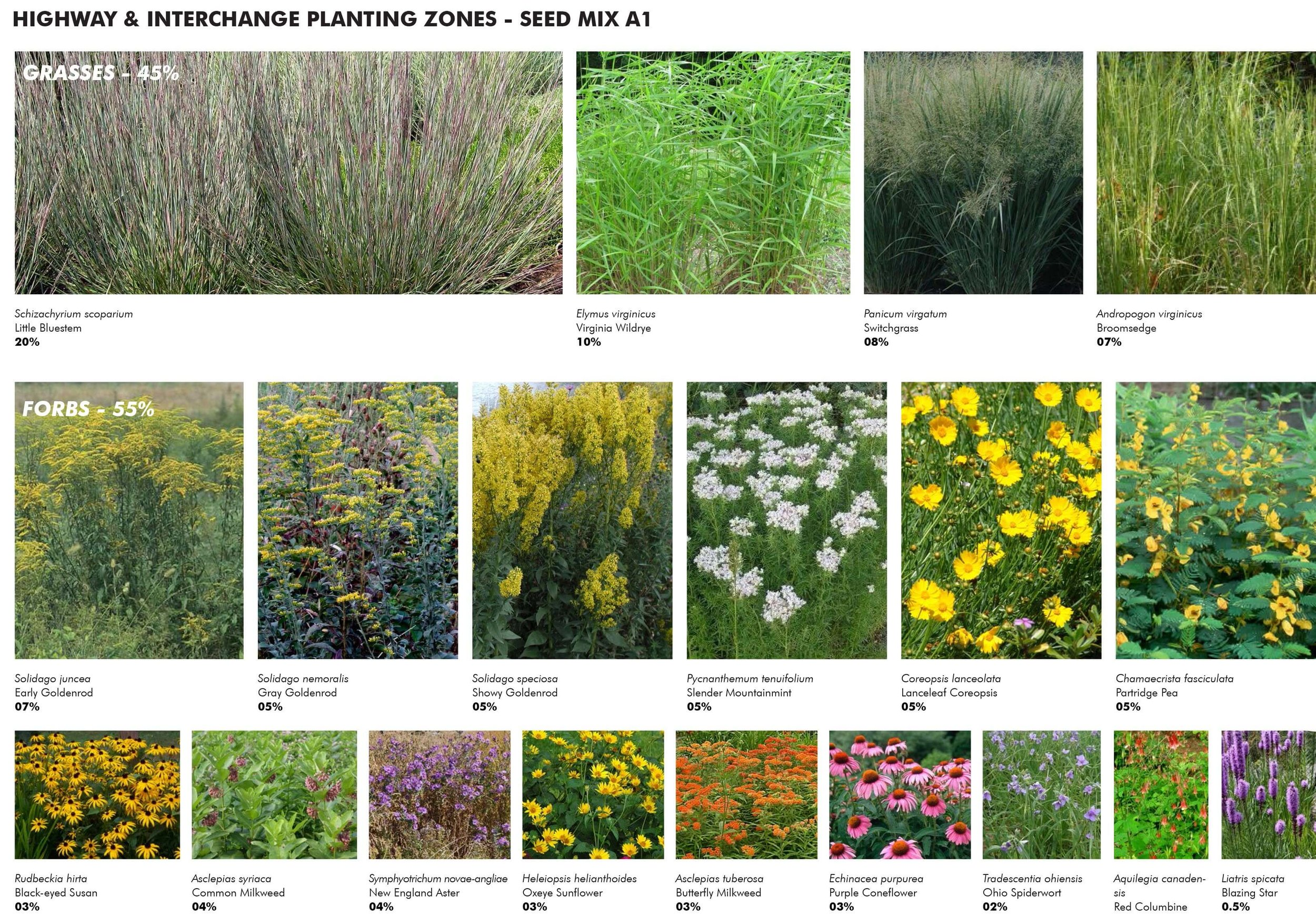 16-Access Road Ecotones-Plant Selection.jpg