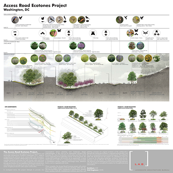 Maryland ASLA Boards_Access Road_600px.jpg
