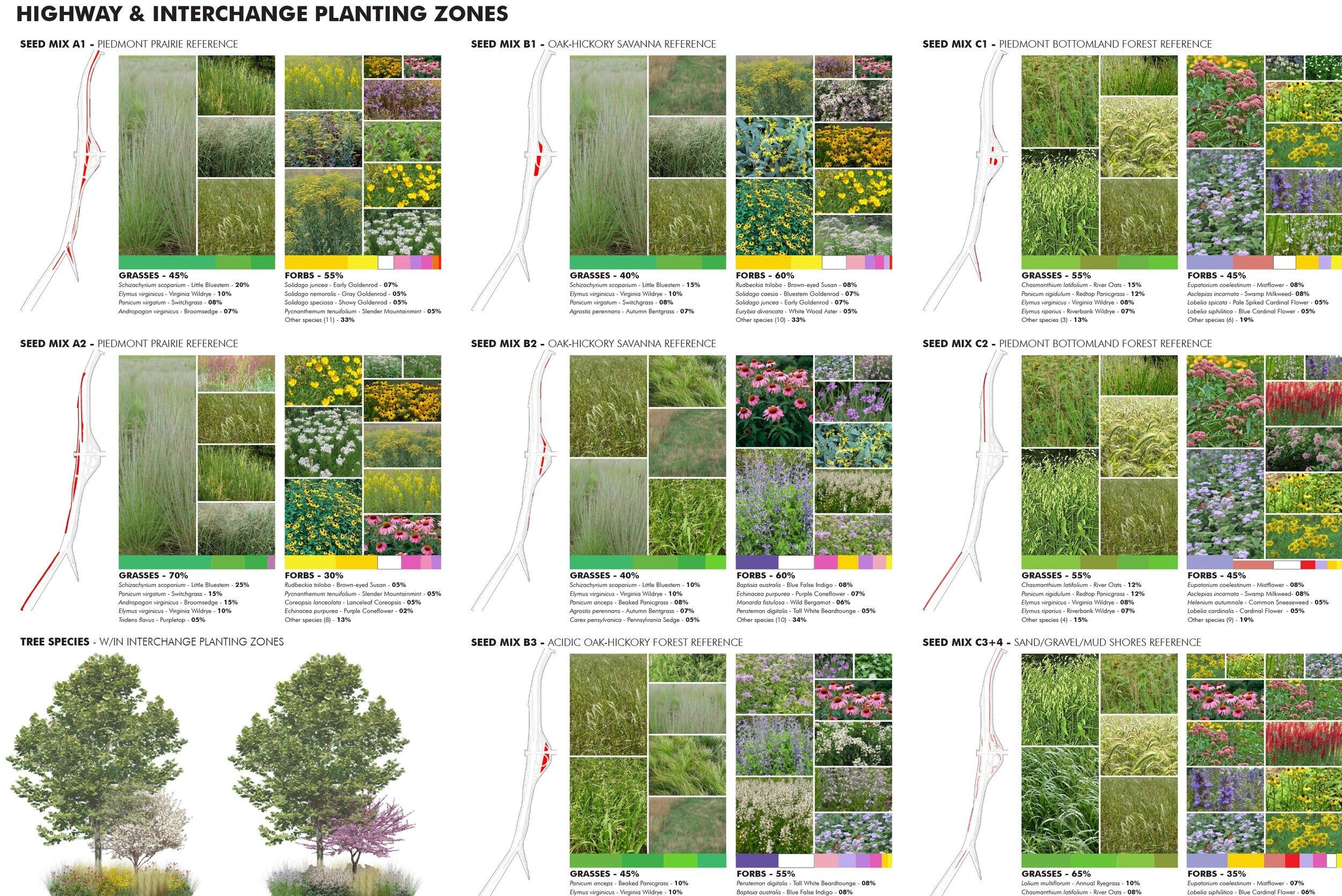 15-Access+Road+Ecotones-Plant+Selection.jpg