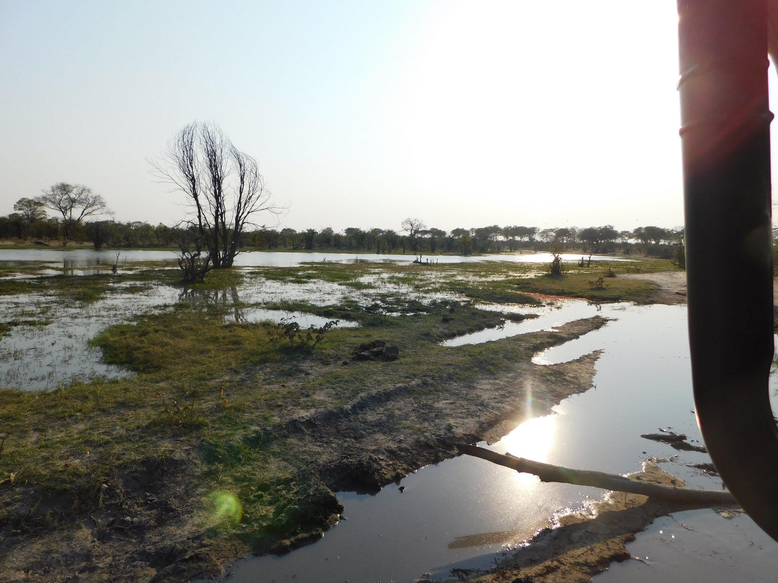 The sun hitting the water at the start of the Okavango Delta.
