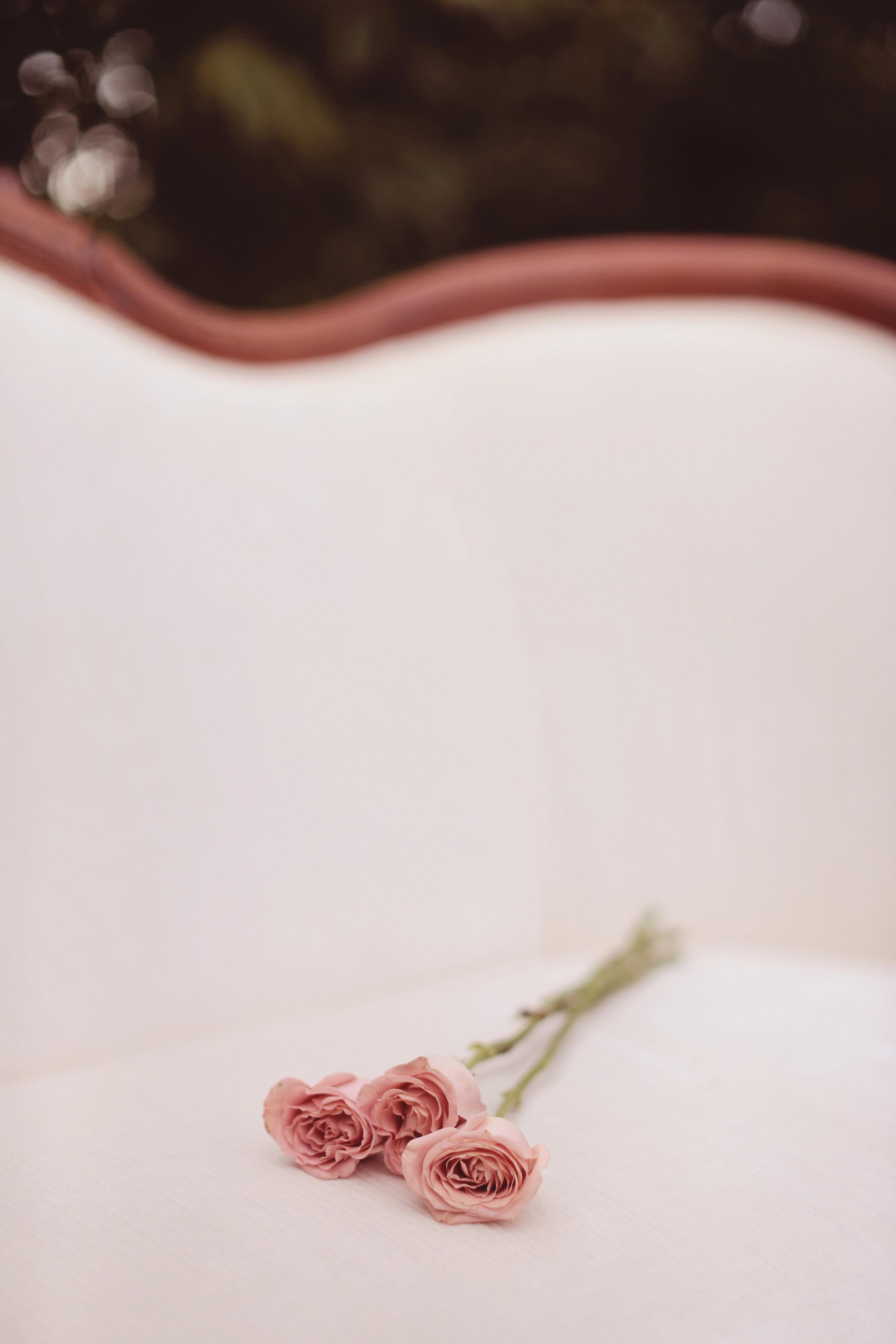 EternalReflectionsPhotography|VictoriaStyledWedding-51