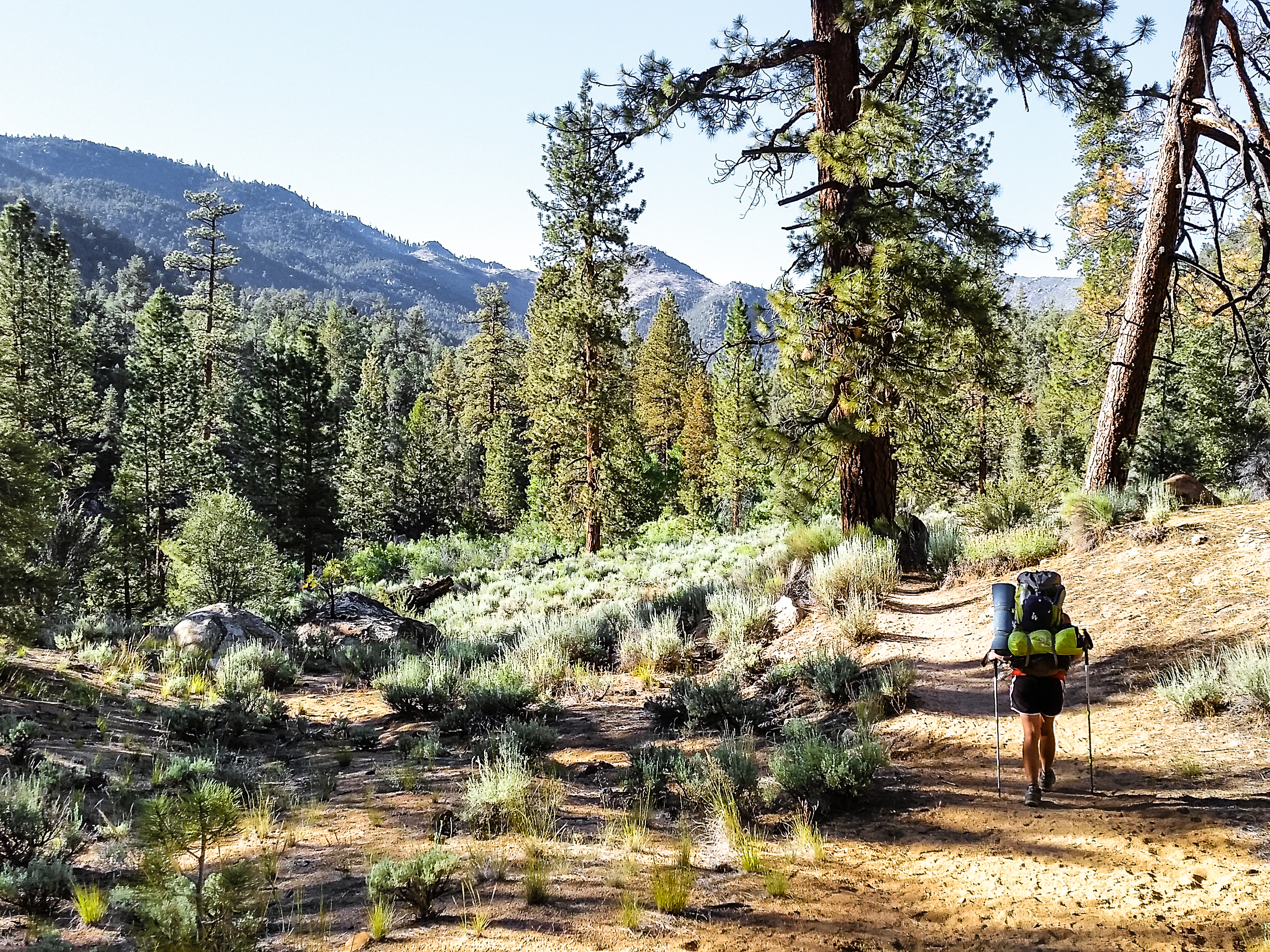 Hiked out of Kennedy Meadows on June 16