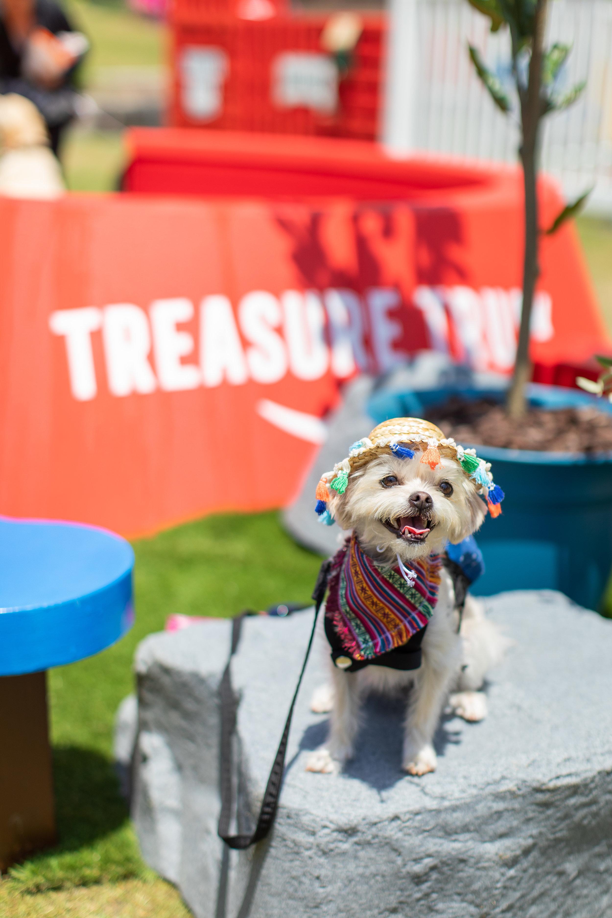 Pup-Fest-Amazon-Treasure-Truck-LA-2019-352.jpg