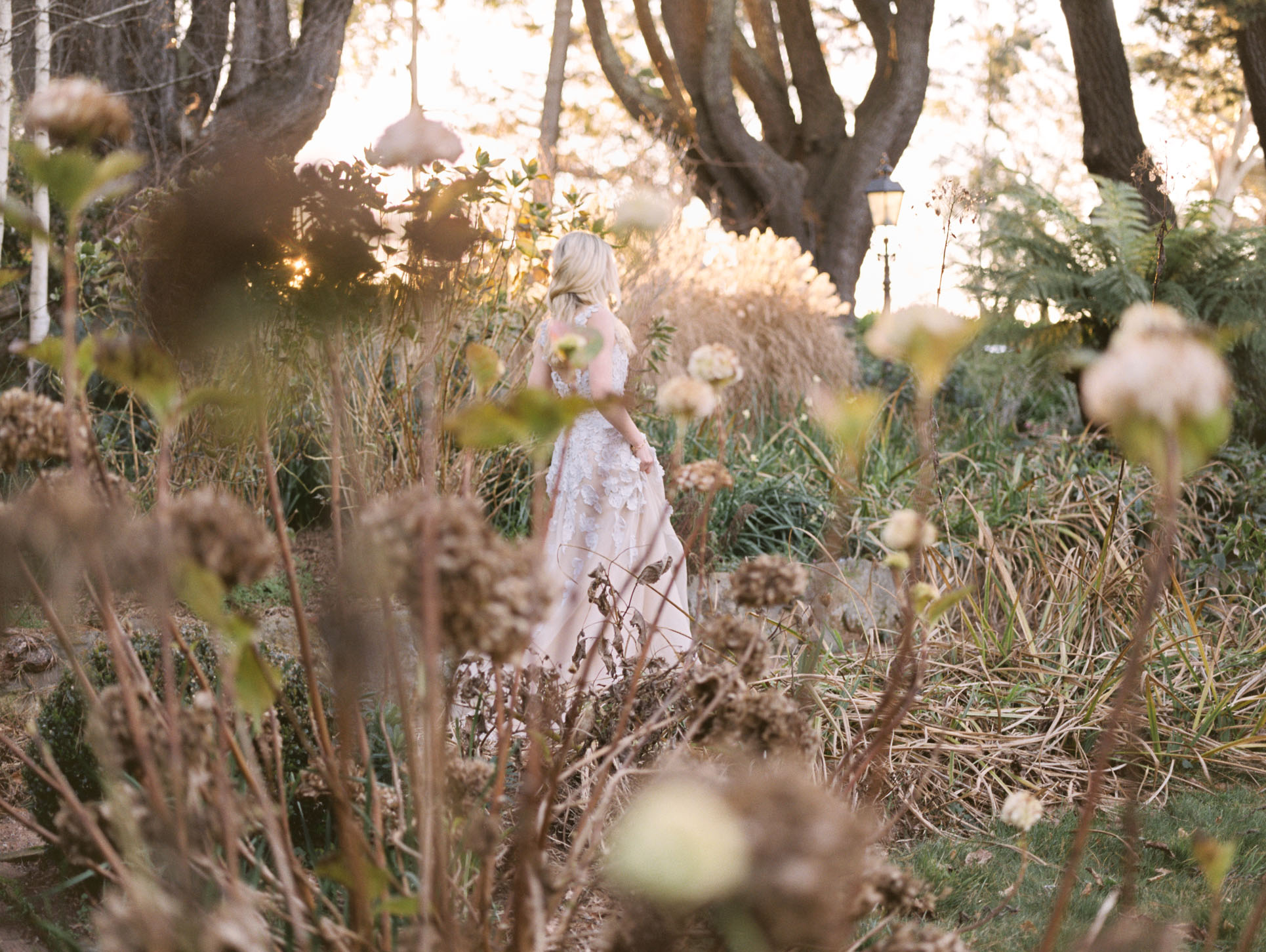 Hopewood House - Romantic Winter Wedding Shoot - Lilli Kad Photography - Shot - Garden Dalliance.jpeg