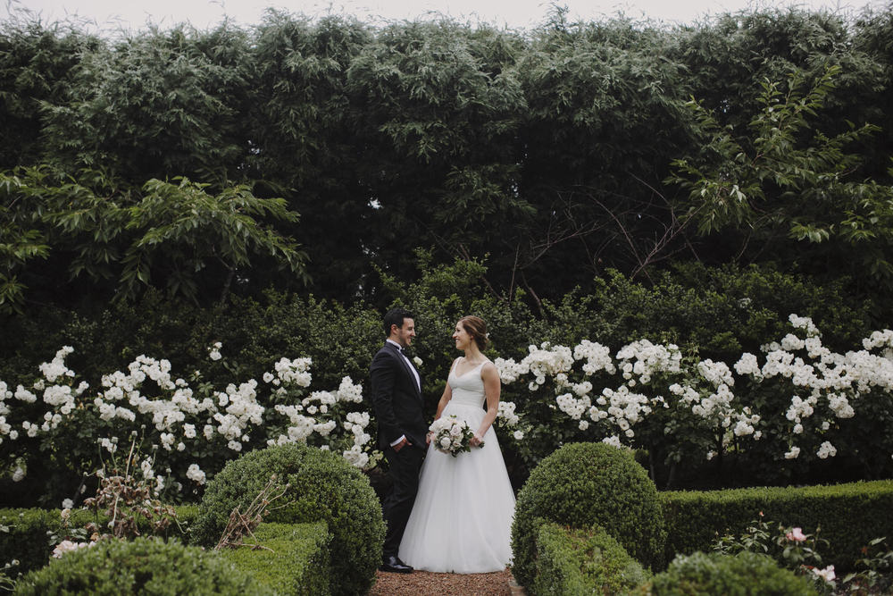 Justin Aaron Photography - Elizabeth & Damien  - Hopewood House - Wedding Gallery - Couple Hedge Maze Couple.jpeg
