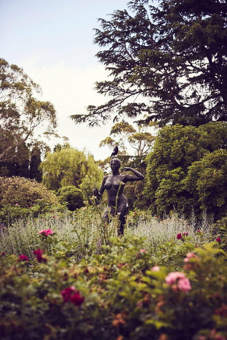 Hopewood House - Weddings  - Harpers Bazaar - Woodland Wedding in the Souther Highlands - Alyssa and Adriano - Statue and Magpie.jpg