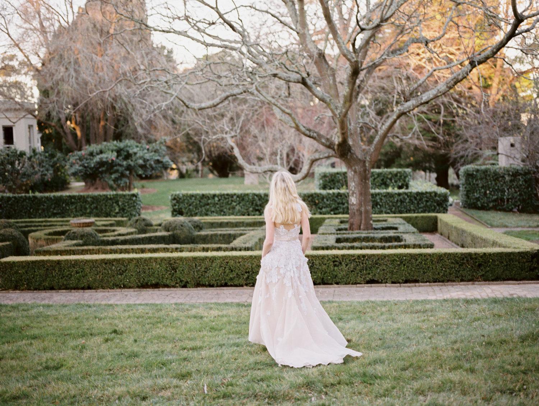 Hopewood House - Romantic Winter Wedding Shoot - Lilli Kad Photography - Shot - Garden Hedge maze.jpeg