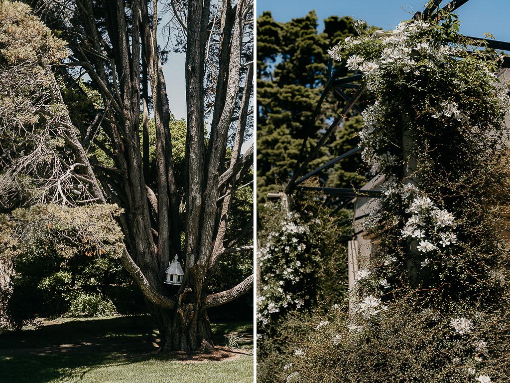 Sydney_Wedding_Photographer_Andy_Alex_HopewoodHouse_15.jpg