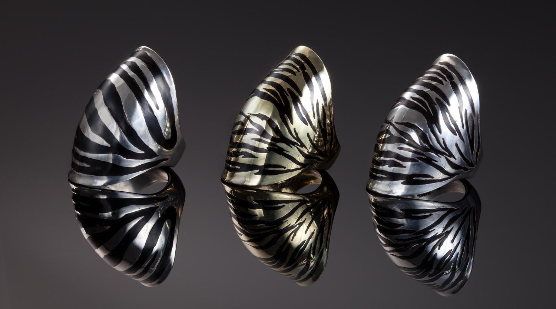 Zebra_Rings.jpg