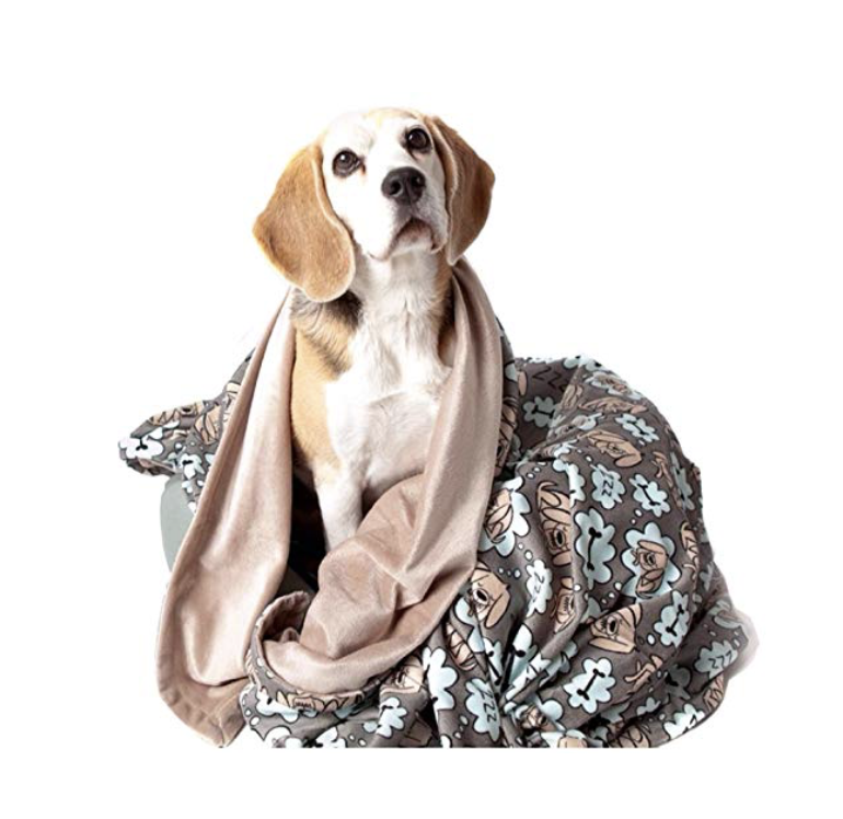 20. Doggie Blanket