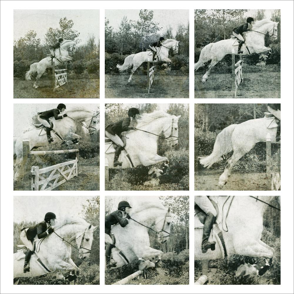 Friedman, 45 x 45,2800 PHOTO ON METAL jumping series 2012 1:5 FSO .jpg