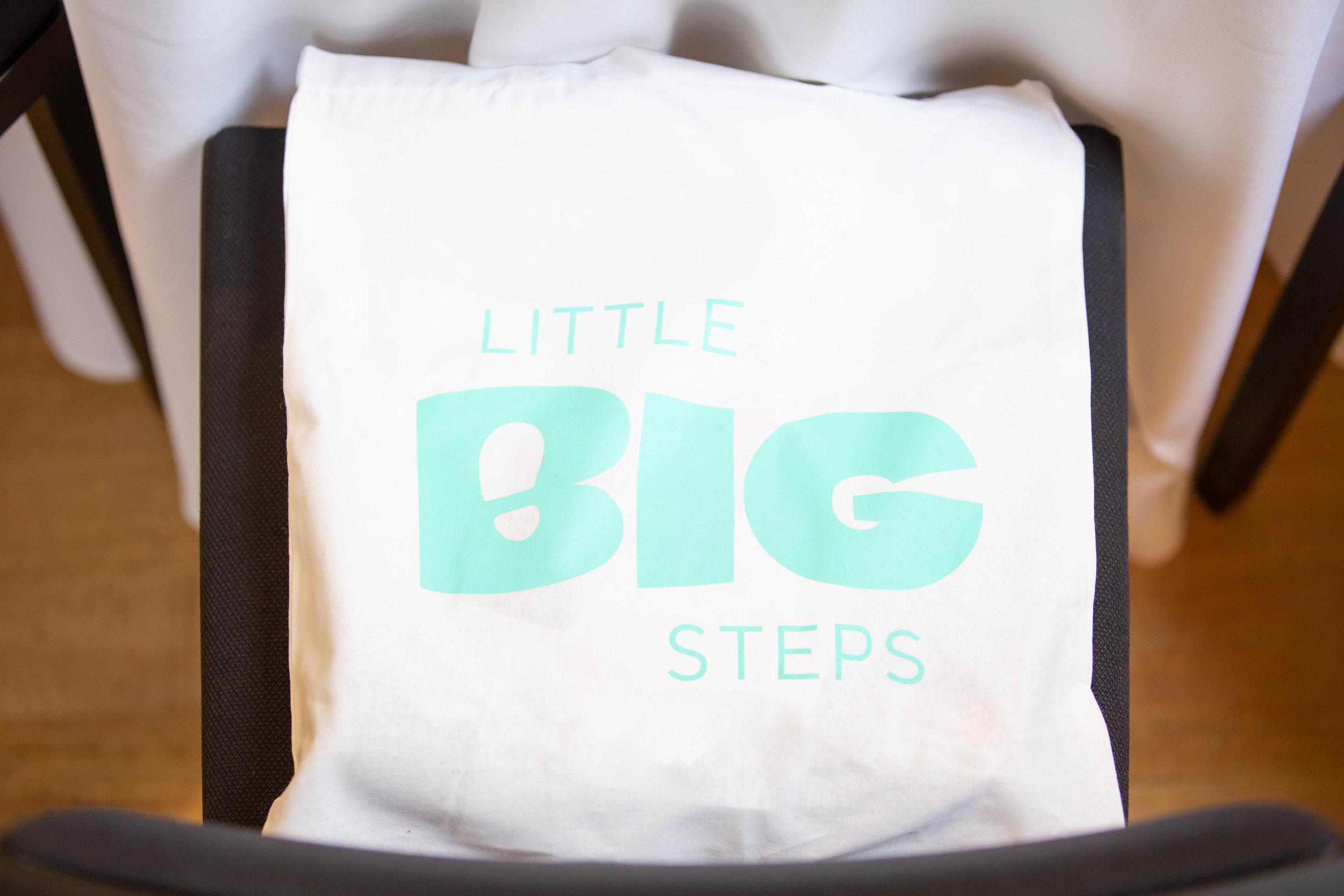 Little_BIG_Steps_011.jpg
