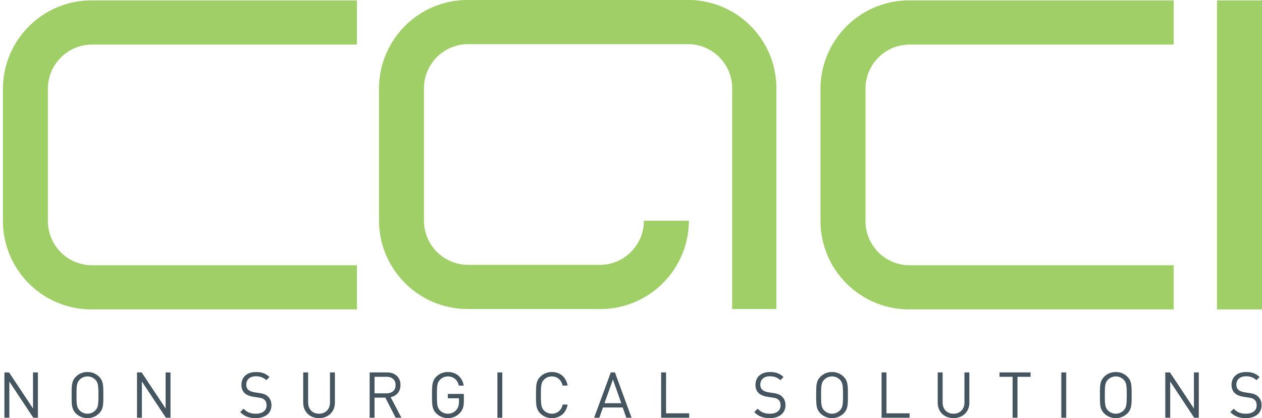 NEW_CACI_logo_NSS_RGB.jpg