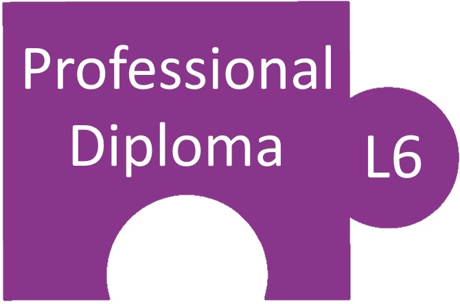 Level 6 Professional Diploma Resources    L6M1 Strategic Ethical Leadership   L6M2 Global Commercial Strategy   L6M3 Global Strategic Supply Chain Management    L6M4 Future Strategic Challenges   L6M5 Strategic Programme Leadership   L6M7 Commercial Data Management   L6M8 Innovation in Procurement and Supply   L6M9 Supply Network Design   L6M10 Global Logistics Strategy