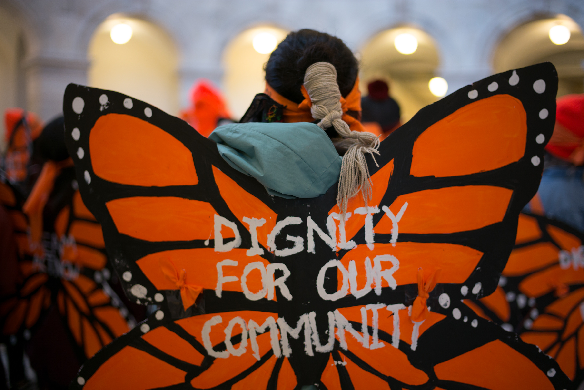Fuego butterfly: dignity for our community