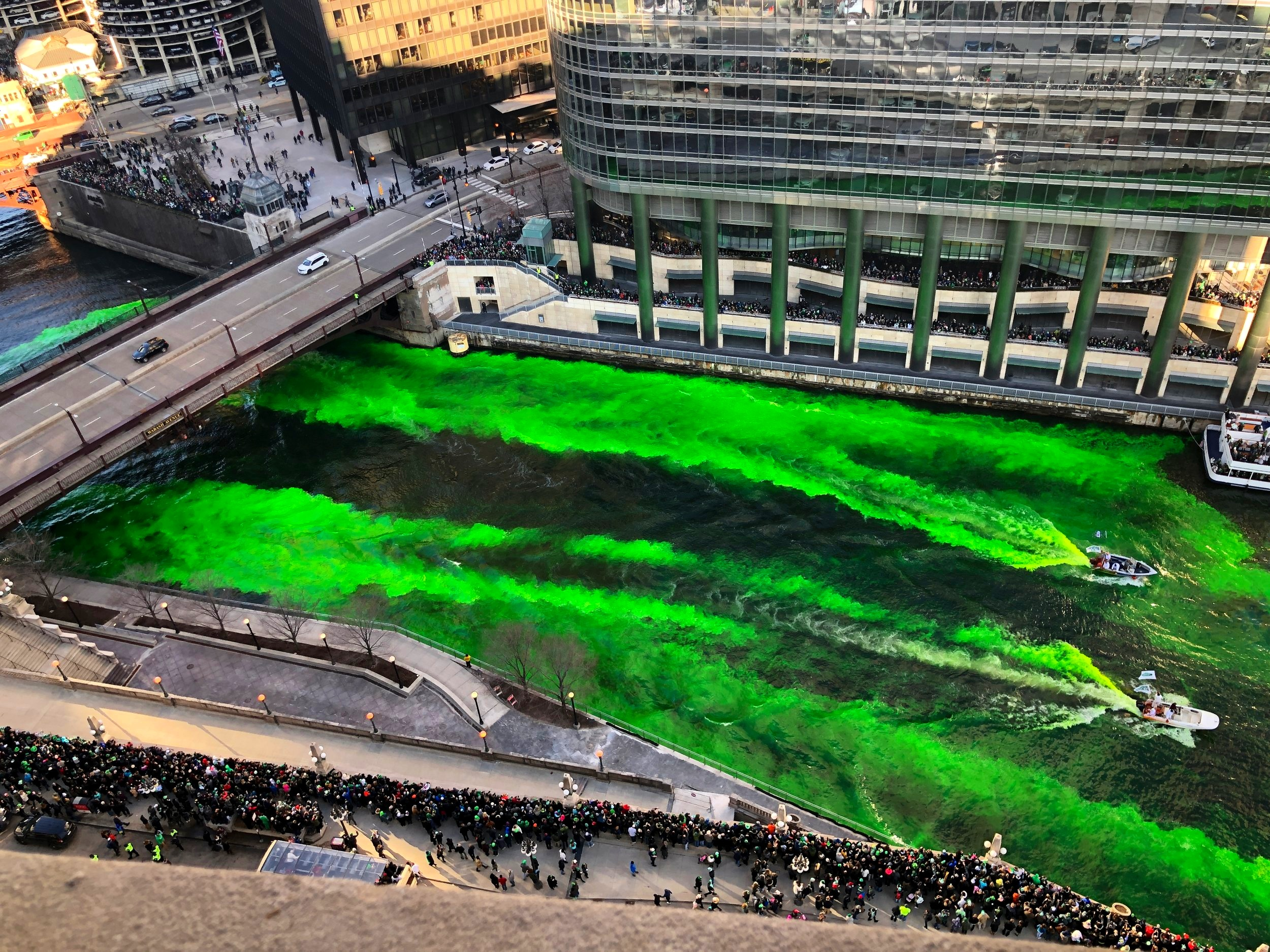 Chicago River Dying
