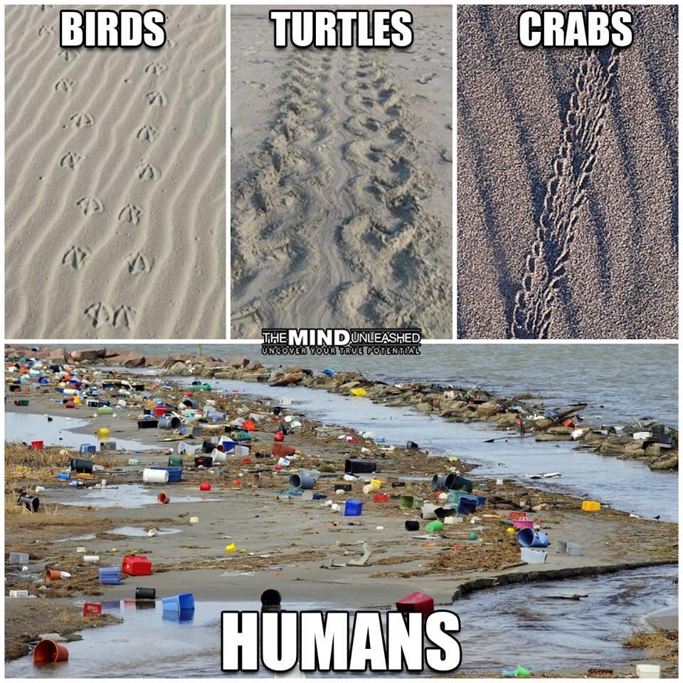humanworld.jpg